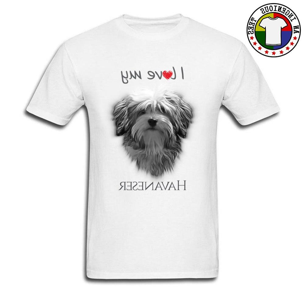 cute pekingese shih tzu dog college font