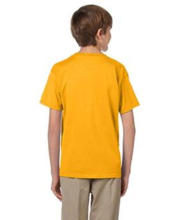 Fruit of the Loom Youth 5 Oz HD Cotton T-Shirt - Gold - L -